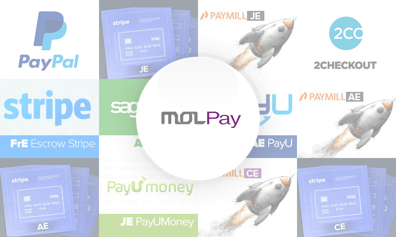 AE MOLPay payment gateway
